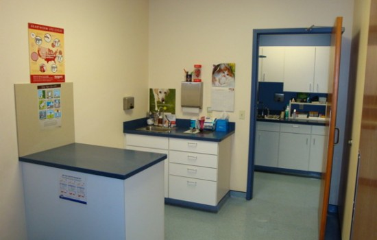 Our four fully-equipped exam rooms provide a comfortable setting for both you and your pet to meet with our veterinarians. APVC also has a private room designated for client-veterinarian consultations.